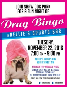 Drag Bingo to Benefit Shaw Dog Park - Nov. 22, 2016
